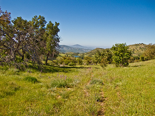 The view from the trail to Peak 4159 Oak Benchmark on the right and Viejas Mountain in the distance