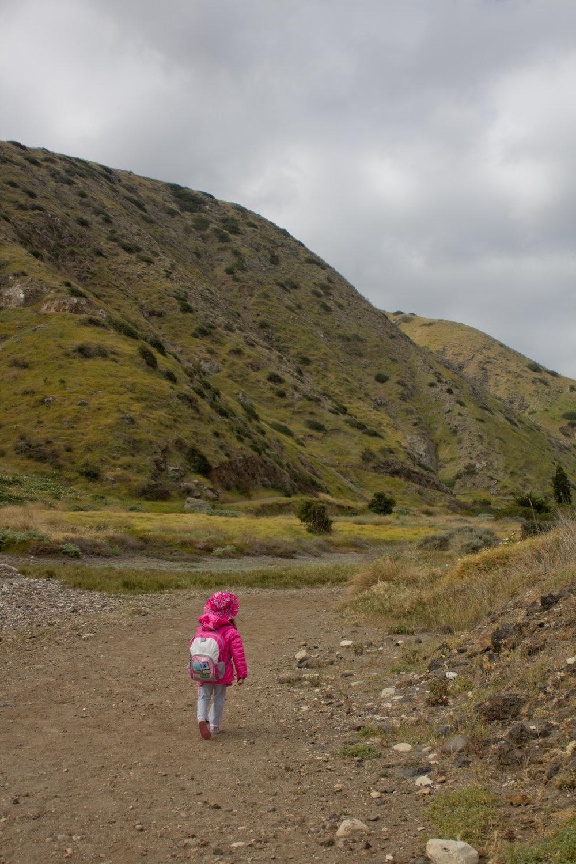 Sophia hiking down the trail on Santa Cruz Island