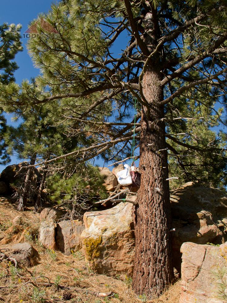 Bear bag, hanging near Reyes Peak