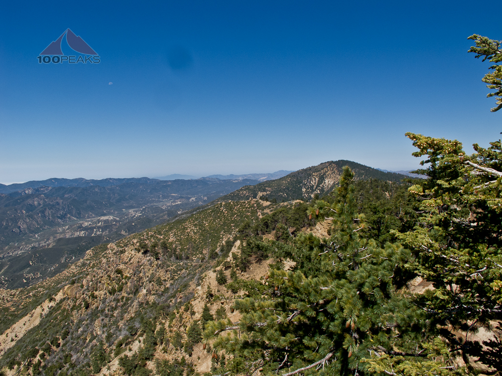 Reyes Peak from Haddock Mountain