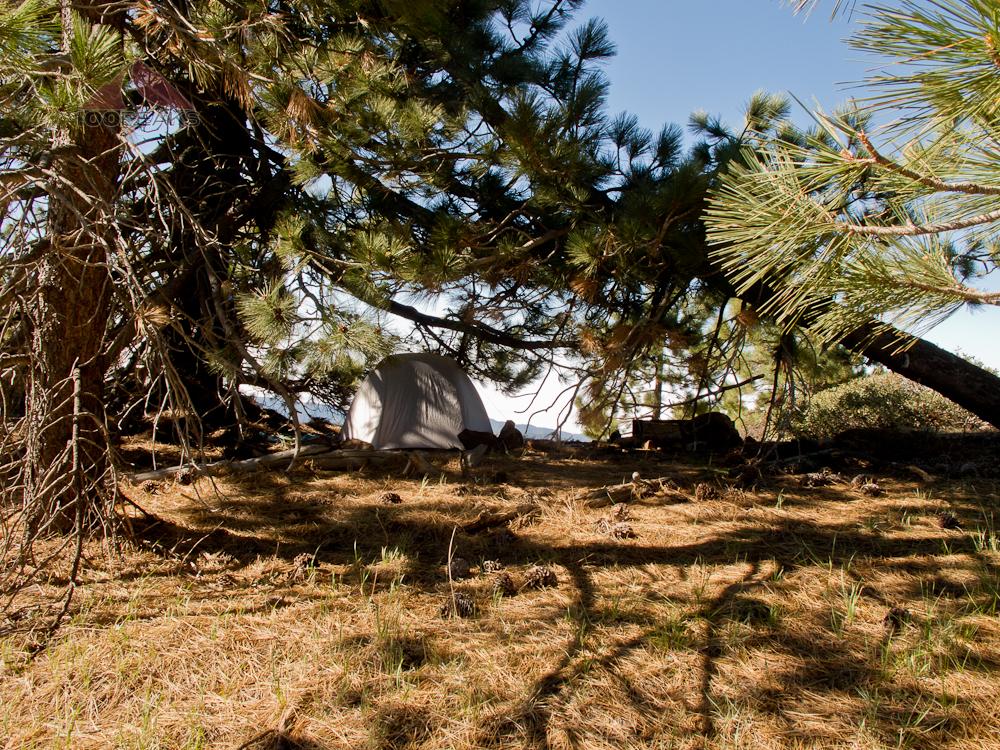 Tent Camper near Reyes Peak