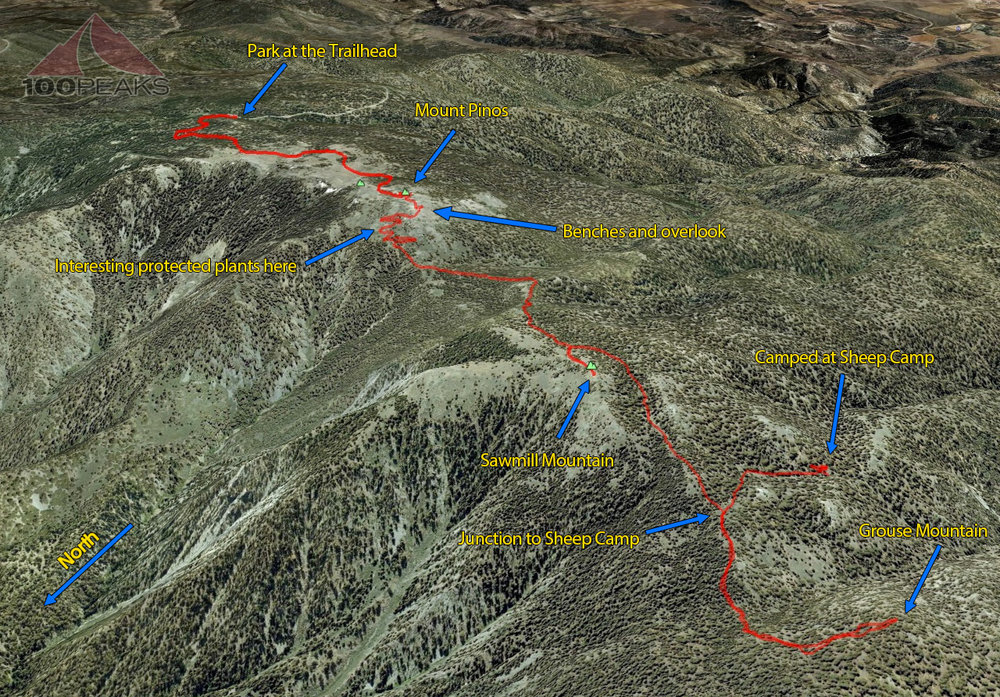 Mount Pinos Trail Map