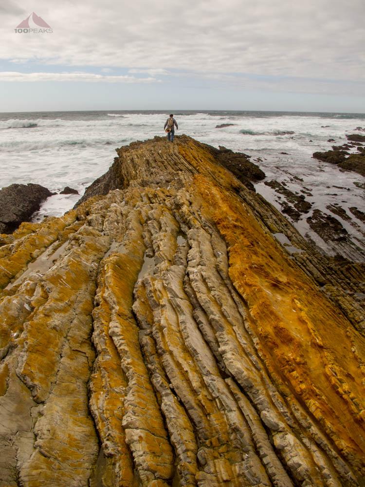 Reamo exploring the rugged coastline