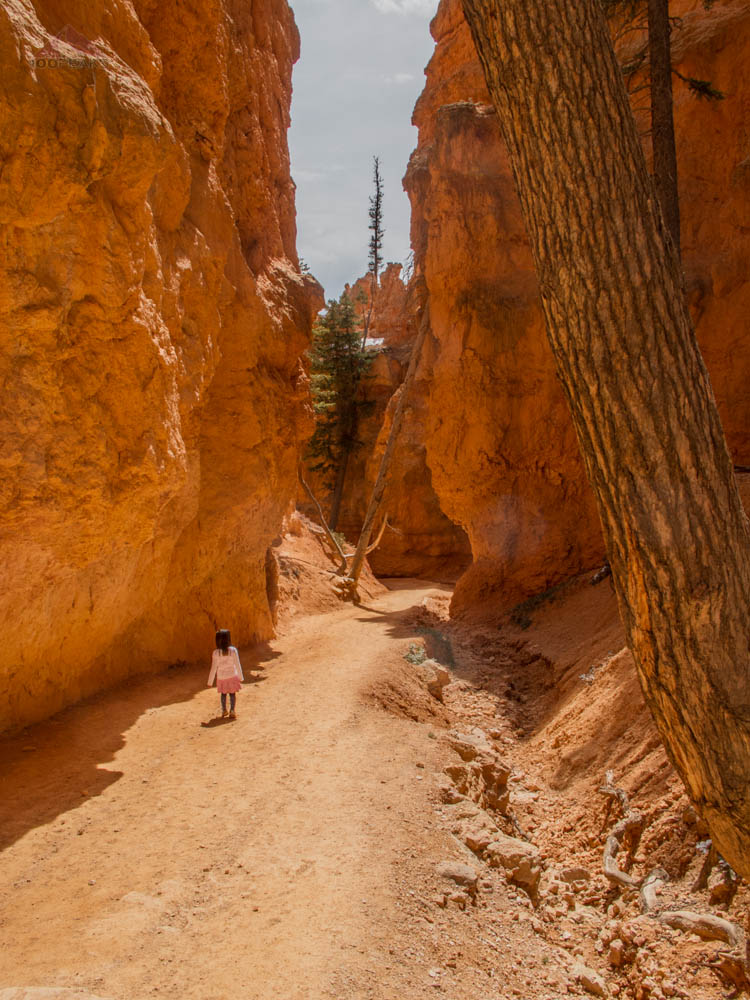 Hiking along Bryce Canyon