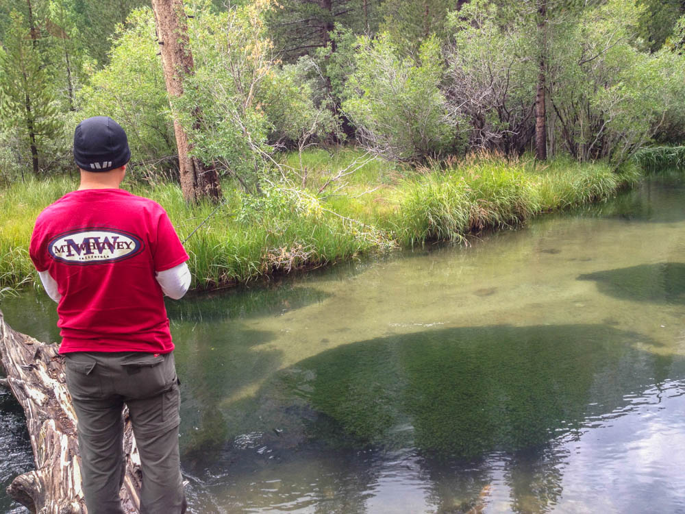 Fishing for trout in the Middle Fork of Bishop Creek