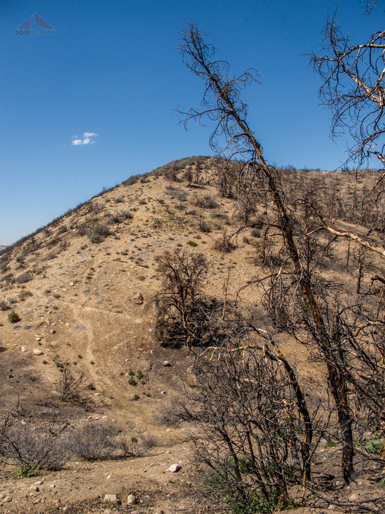 Last push upward to San Guillermo Mountain
