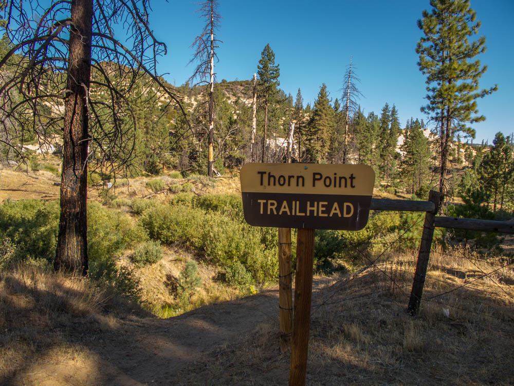 Thorn Point Trailhead Sign