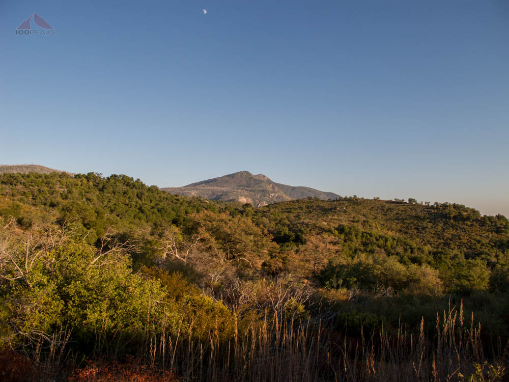 Cuyamaca Peak from the trail