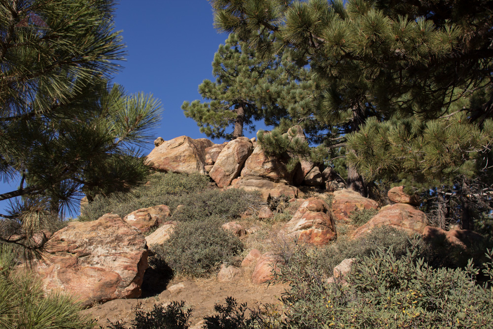 Reyes Peak summit rocks
