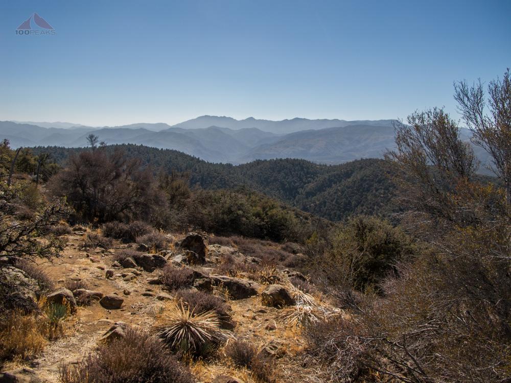 Cuyama Peak from Fox Mountain