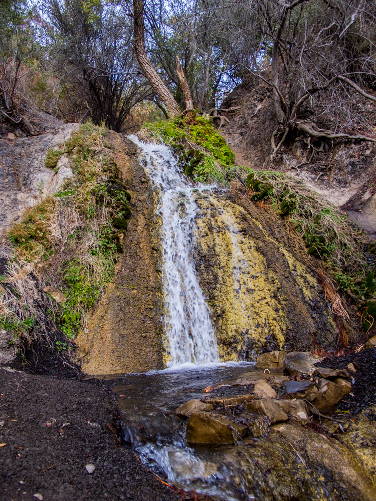 Found a rushing spring, even in this dry year