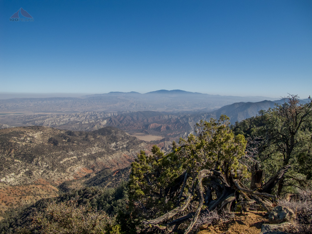 Mount Pinos in the distance from Fox Mountain