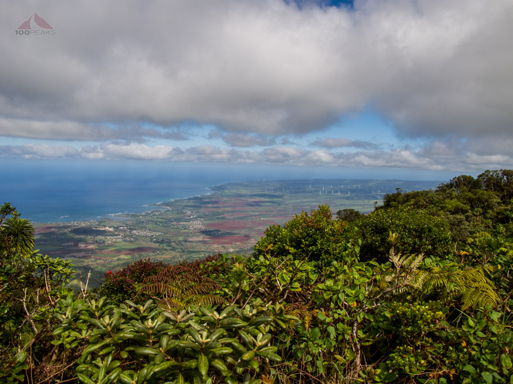 Actually a view from the top of Mount Ka'ala, Oahu