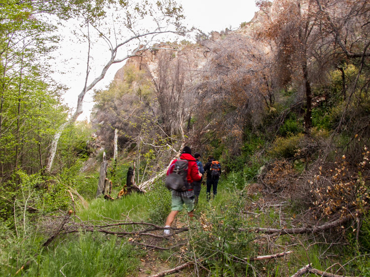 Hiking through Cougar Canyon