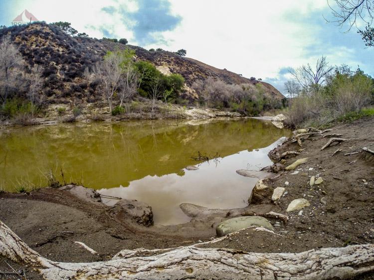 The Santa Ynez River