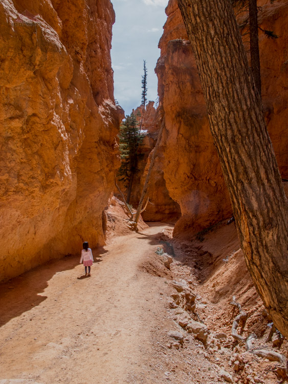 Hiking along Bryce Canyon