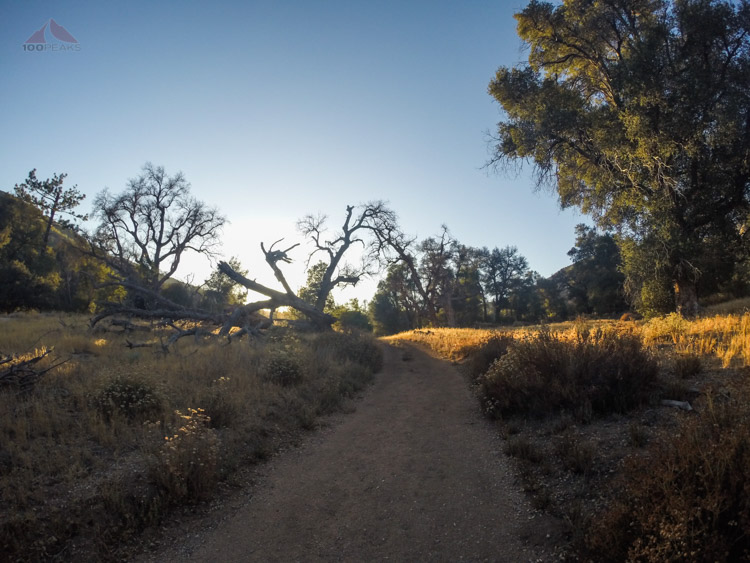 Arroyo Seco Trail