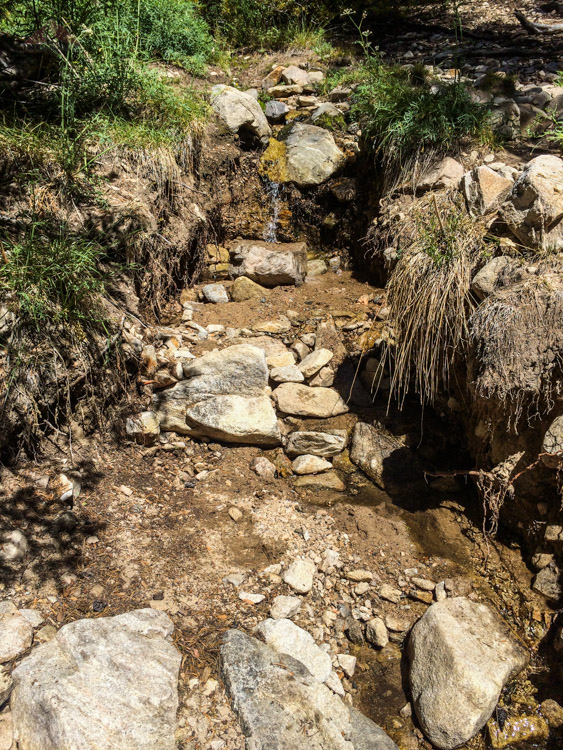 Our water source during our stay at High Creek Camp