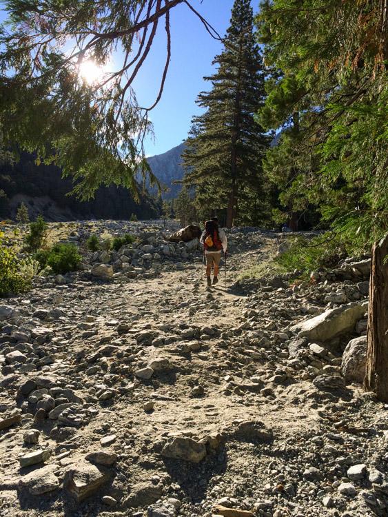 The PD, hiking along Mill Creek