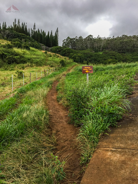 Leave the paved section to the Waihee Ridge Trail