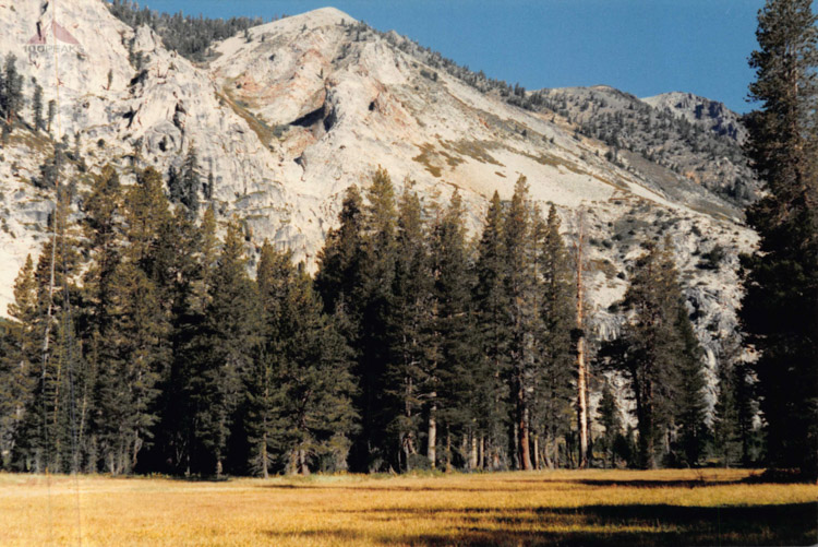 Big Meadow after Coyote Pass