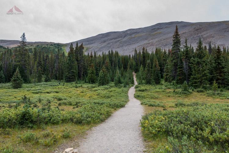 The Parker Ridge Trail