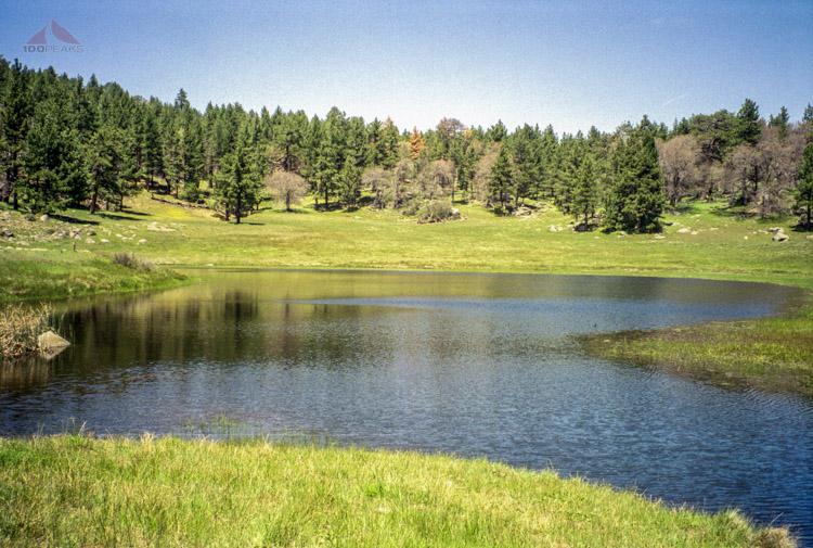 Water of the Woods, Laguna Meadow