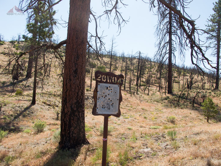 Bullet-riddled sign on the Yellowjacket Trail