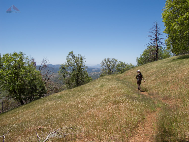 The PD on the Lower Burnt Pine Trail Grasslands