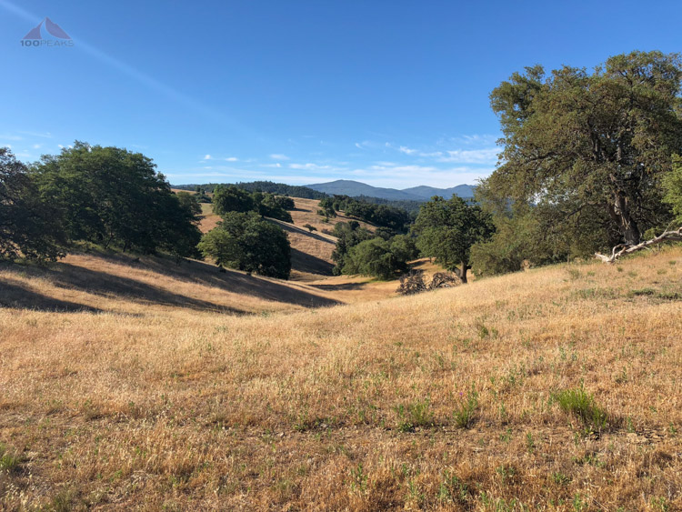 Along one of my trail runs in Santa Ysabel Preserve East