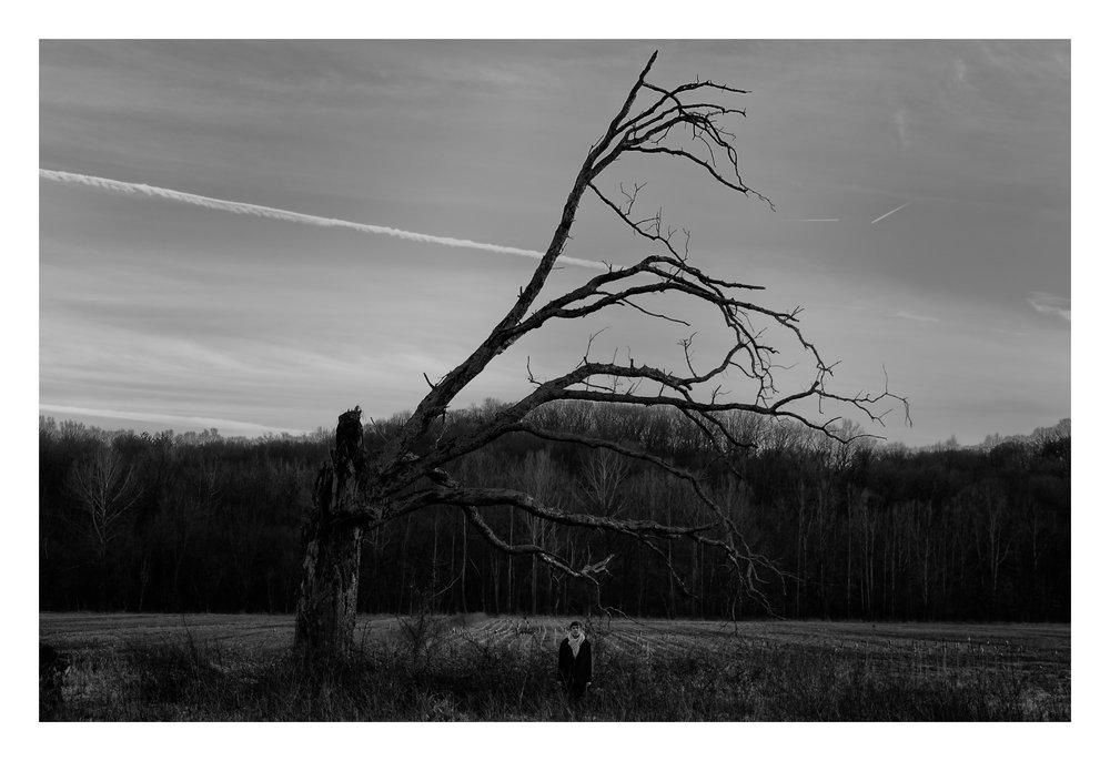 Treefingers (self portrait).jpg
