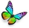 chakra-butterfly.jpg