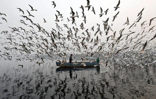 Photo by  Saumya Khandelwal/Reuters