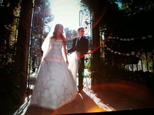 wedding-gallery.jpg