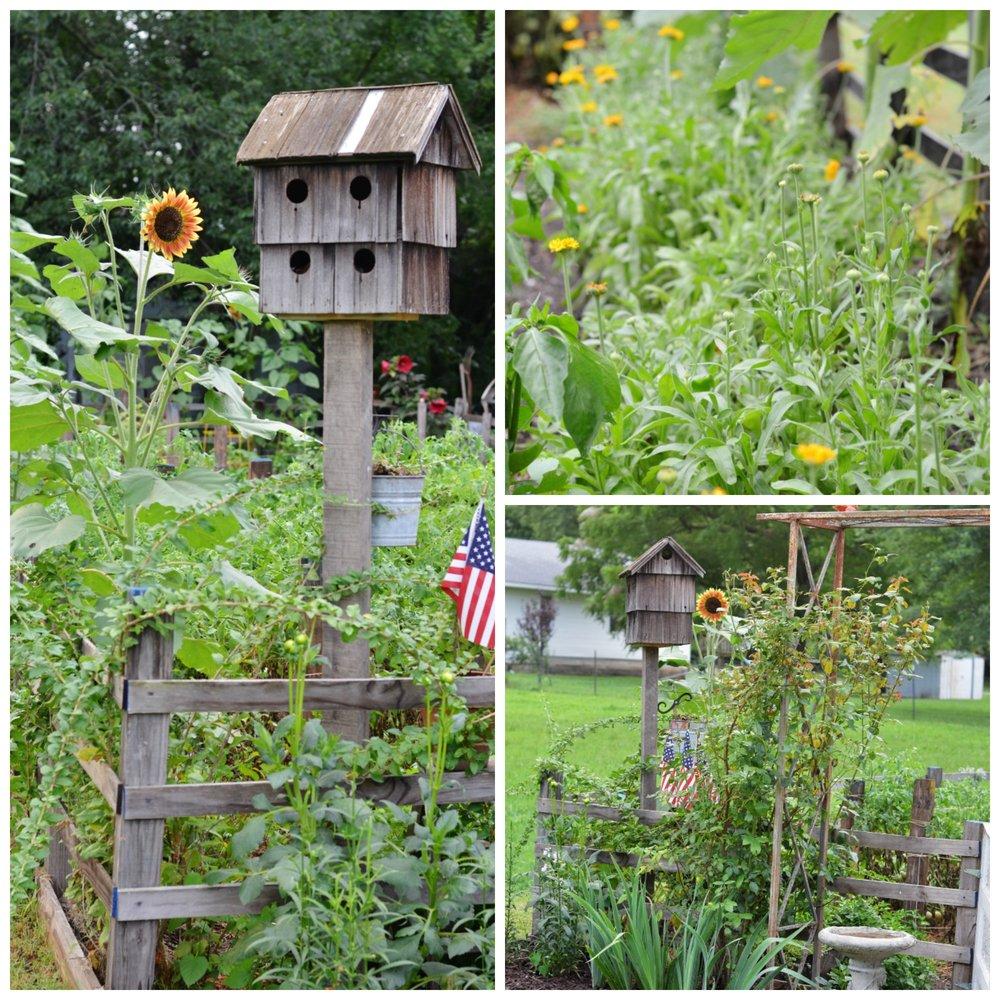 flower garden birdhouse heirloom sunflowers