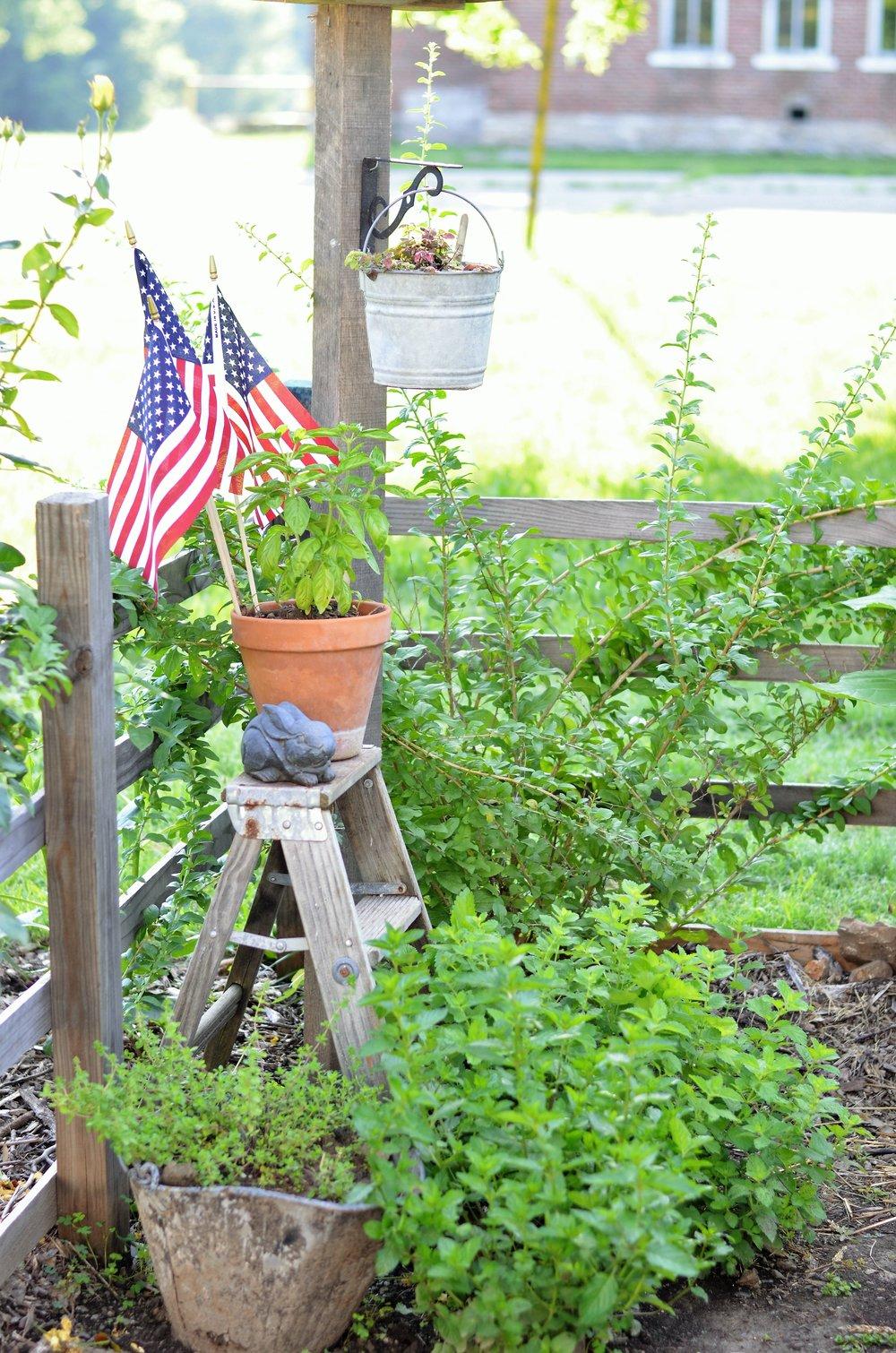 Garden junk in the vegetable garden