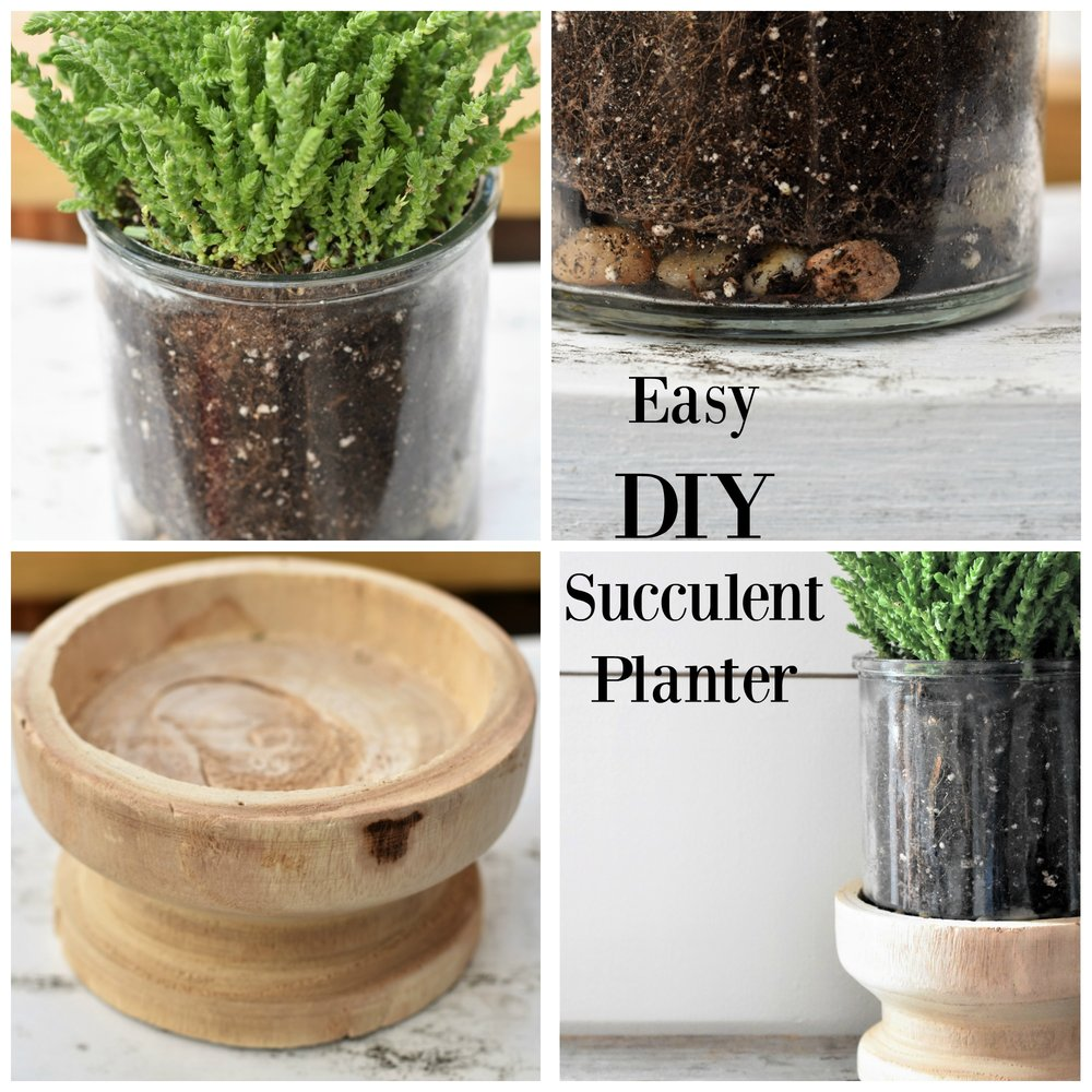 Easy DIY Succlent Container Planter