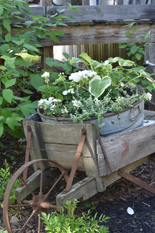 Beautiful Garden Wheelbarrow with flowers