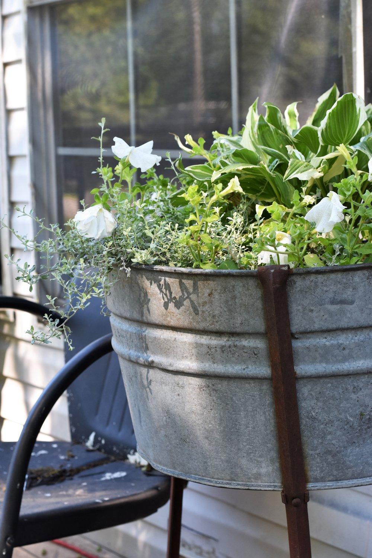Green and White Garden Old Washtub Planter