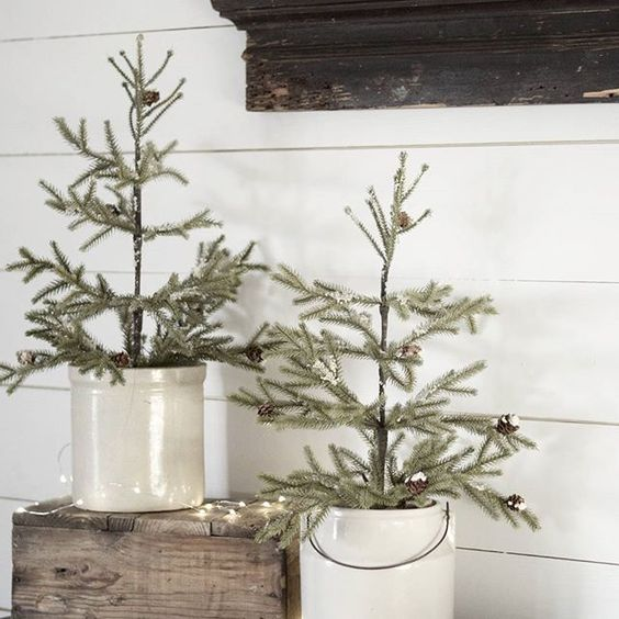 Simple Farmhouse Christmas Tour - Christmas Trees in Crocks