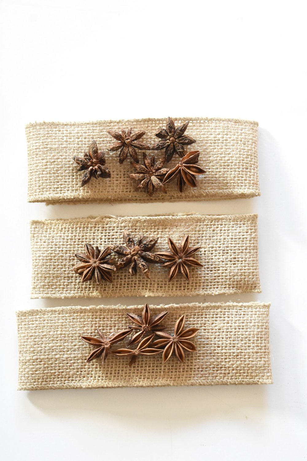 DIY Easy Thanksgiving Craft Anise Burlap Napkin Holder