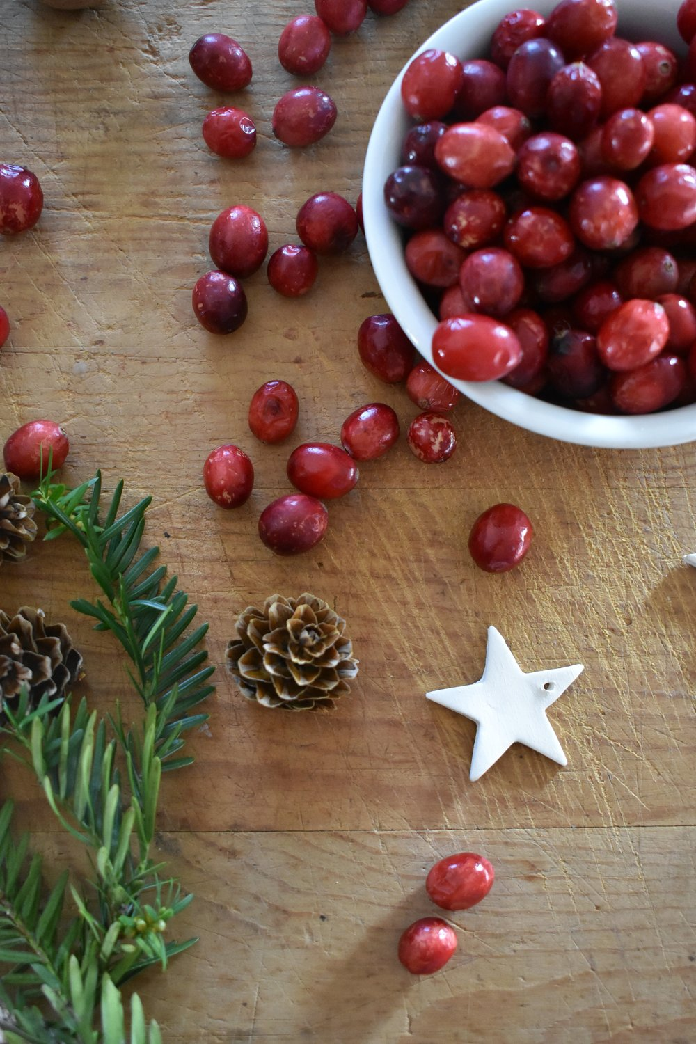 How to dry cranberries without a dehydrator and how to dry cranberries in the oven
