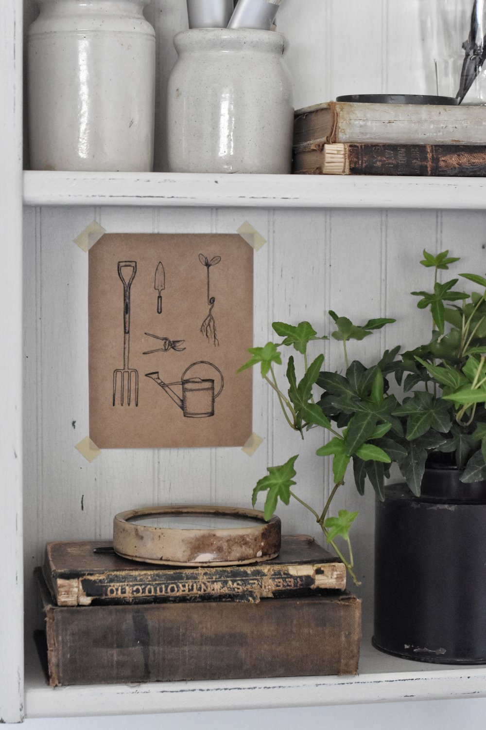 The care and keeping of houseplants and using them to decorate the house. www.flatcreekfarmhouse.com