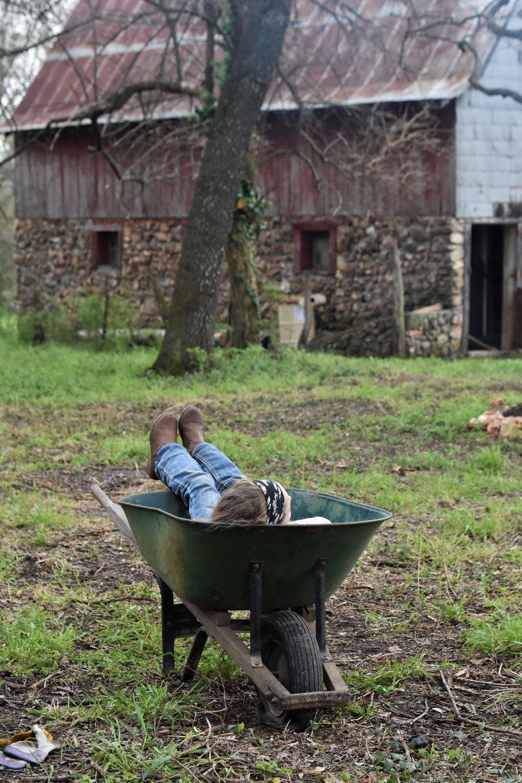 Farm life simplicity