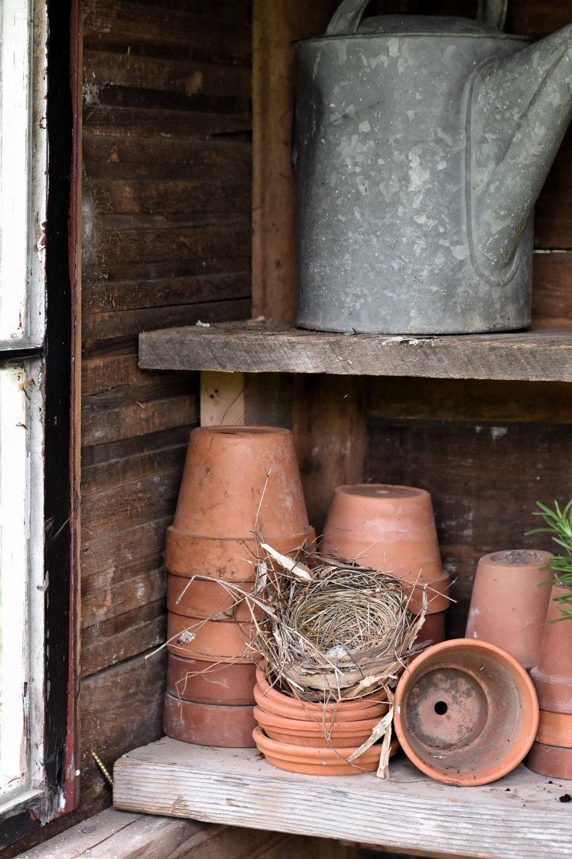clay pots and an old bird nest www.rockyhedgefarm.com