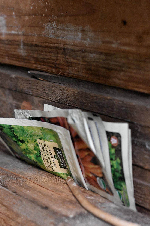 organic garden seeds www.rockyhedgefarm.com