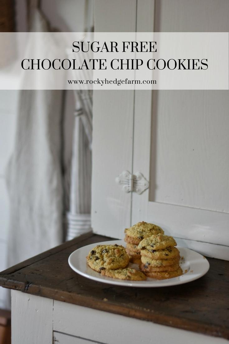The very best sugar free low carb chocolate chip cookies. THM-S Paleo Keto www.rockyhedgefarm.com