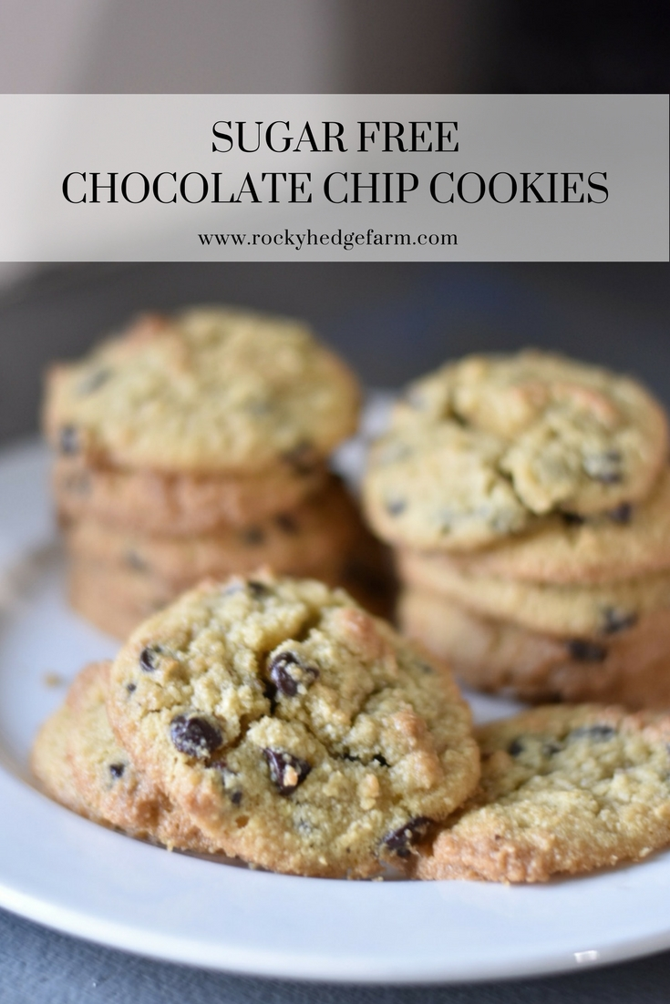 delicious, quick and easy sugar free chocolate chip cookies