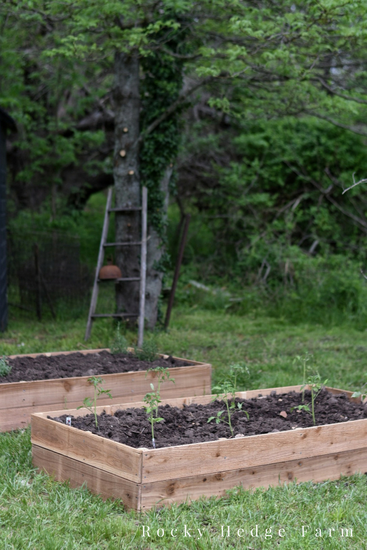 Affordable Cheap Long Lasting Raised Garden Vegetable Beds