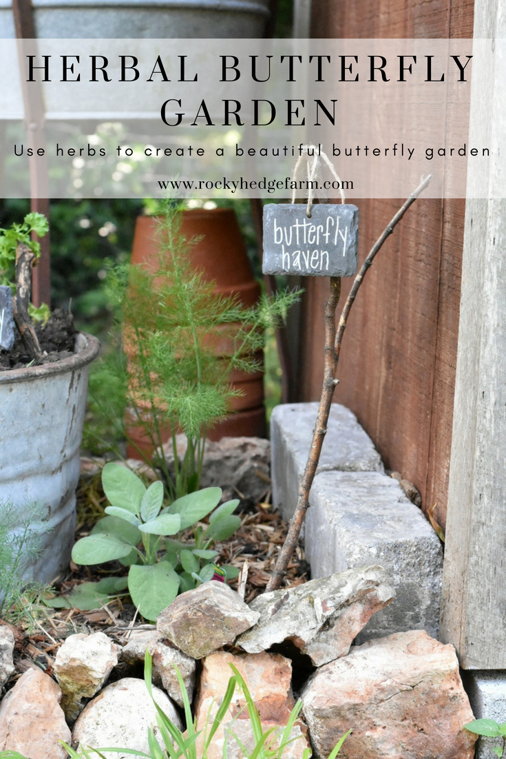 What Herbs to Plant to Attract Butterflies to the Garden